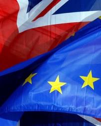 Microsoft 'optimistic' about Britain's Brexit